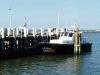Shark Boat - Lewes, Del.
