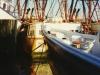 Menhadens - Menhaden boats, Cape May, N.J.