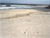 Footprints in the Sand, Avalon, N.J.