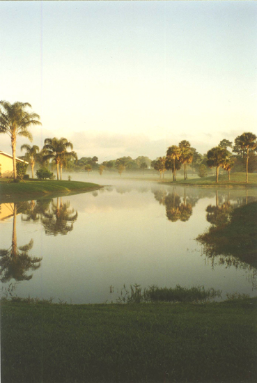 Morning Reflection. View from Emma\'s lanai, Naples, Fla.