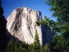 El Capitan - Alpenglow - Yosemite Valley, Yosemite National Park, Calif.