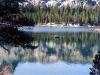 Lake Mary Boa