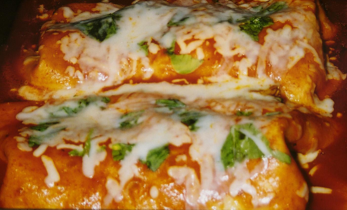 Chicken Enchiladas The Scheherazade Chronicles