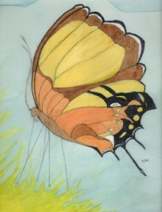 """Butterfly"" Watercolor by Emma"