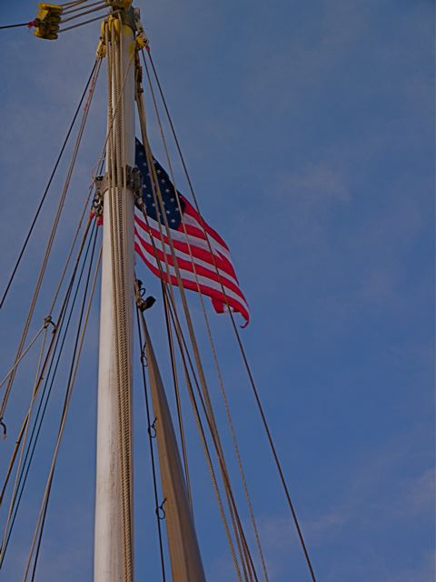 Freedom Flag Unfurled