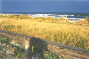 avalon-gold-dune-grass-blue-surf