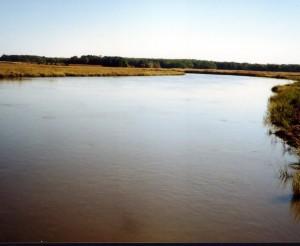 Blackbird Creek 2a