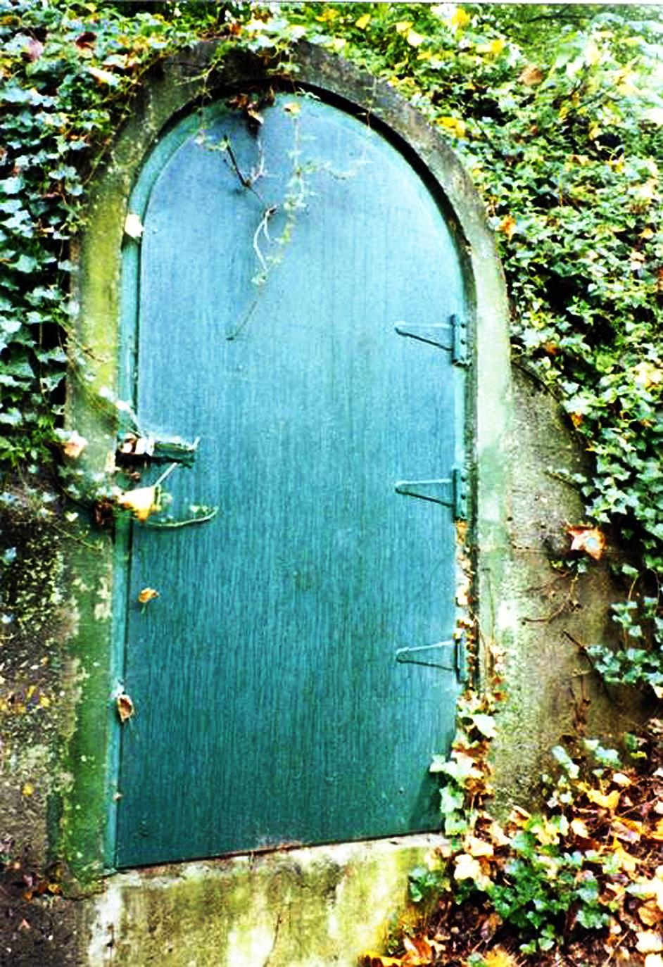 Green Door 300