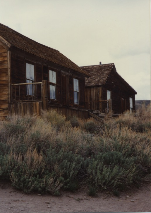 A House in Bodie