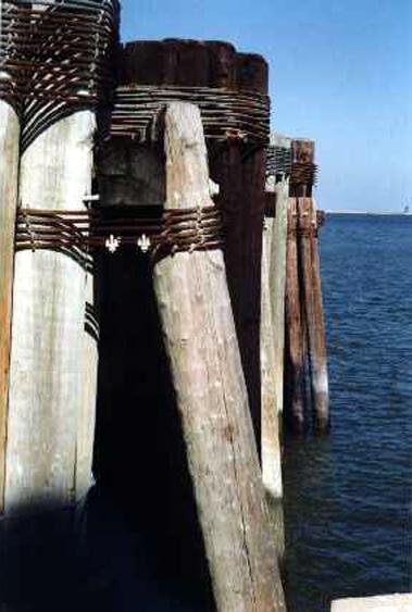 CL001W Dock Pilings