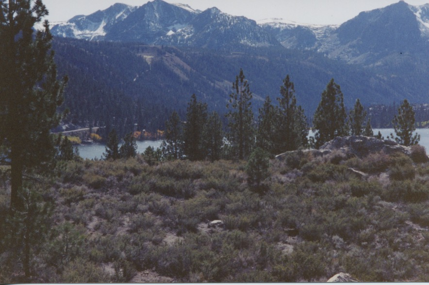 June Lake from Hill