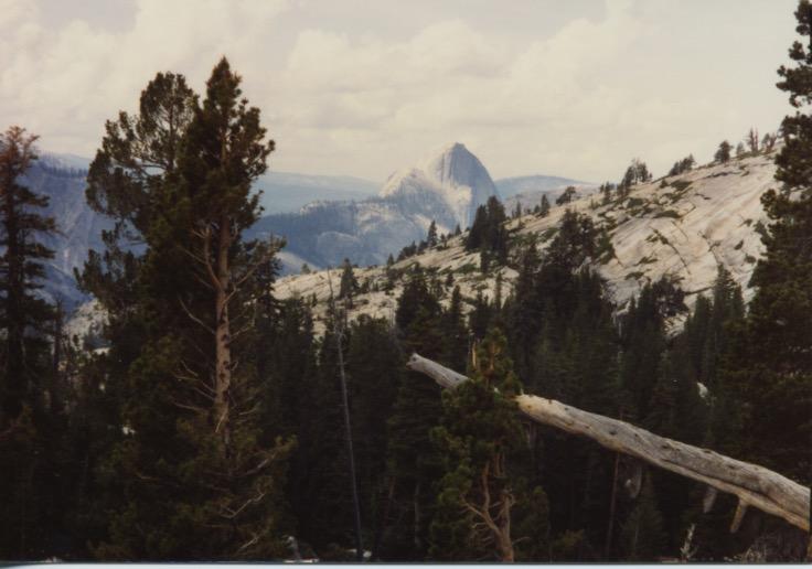 Marmot & Tioga Rd View 1