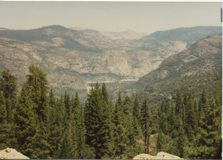 Stanislaus Nat'l Forest 2