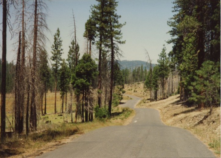 Stanislaus Nat'l Forest