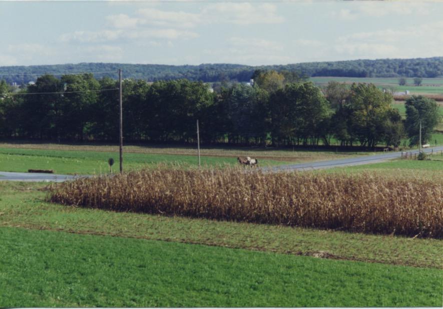 Strasburg RR Amish 1